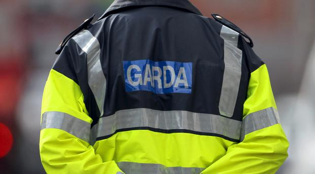 Judge Sherrard said efforts to obtain information from An Garda Siochana would have to be stepped up