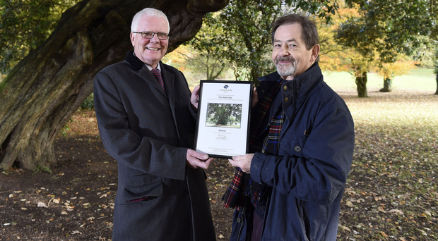 Patrick Cregg, Woodland Trust (left) and Alistair Livingstone of LIGHT 2000, who nominated the tree