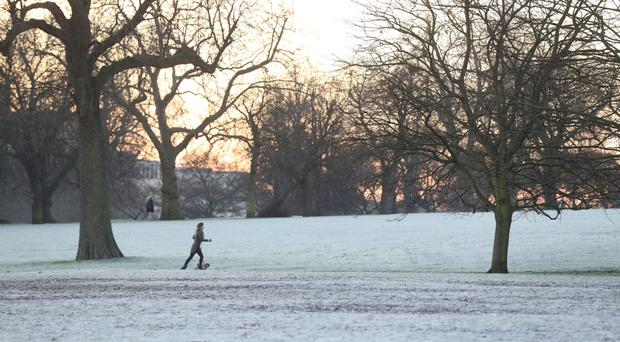 A woman and her dog walk across a frost-covered Regent's Park in London