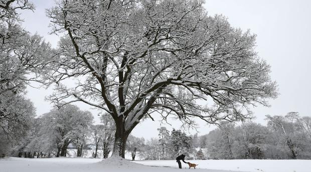 A man walks his dog in the grounds of Braco Castle in Pethshire, as blizzard conditions sweep Britain
