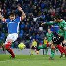 Linfield's Jimmy Callacher tries to block a shot from Curtis Allen of Glentoran during the Boxing Day clash