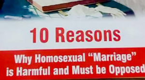 The anti-gay marriage leaflet that was discovered in the library of Belfast's Dominican College