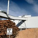 Using wood for biomass power and heat is often seen as a relatively cheap and flexible way of supplying renewable energy
