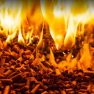 Publishing the names of RHI firms would ensure maximum transparency in a botched scheme that had the