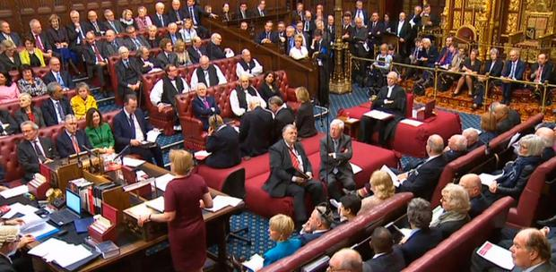 The House of Lords debating the Brexit Bill last week
