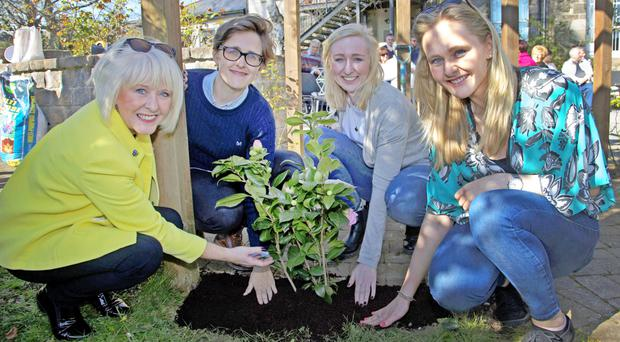 Linda Pywell, daughter of Margaret McKinney, with Margaret's granddaughters Katrina McKinney and Holly and Siobhan Pywell, planting a rose bush in her memory