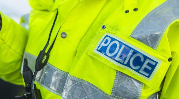 Police are investigating after a petrol bomb was thrown at a house in Ballymena