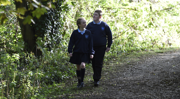 Toni Wilkinson and Andrew Christie of Hazelwood Integrated Primary School take a closer look at Throne Wood yesterday