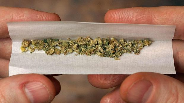 Liberal Democrats will commit to creating a legal market for the production and sale of the substance in its manifesto