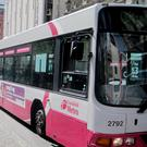 Translink's monopoly on public transport in Northern Ireland is being challenged as a new bus firm plans to compete head to head, the Belfast Telegraph can reveal