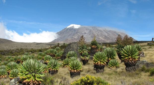 Mount Kilimanjaro, which the couple are going to climb
