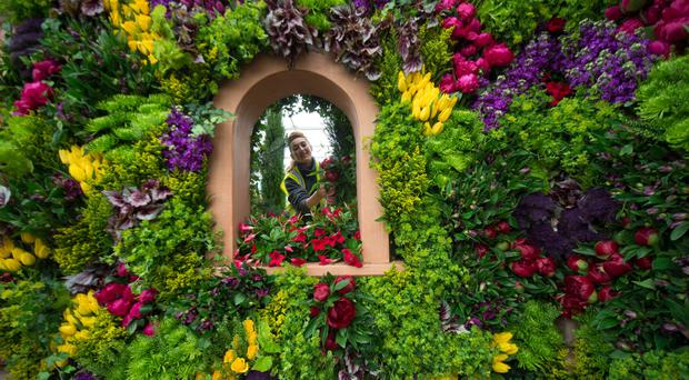 Becky Frost makes final arrangements on the M&S display during preparations for the Chelsea Flower Show