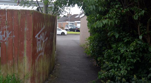 The alleyway which leads from the Craigavon Hospital Psychiatric Unit to Upper Ramone Park