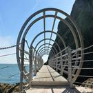 The Gobbins Cliff Path will reopen to the public tomorrow