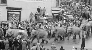 The Circus Comes to Town 1960, courtesy of National Museums NI