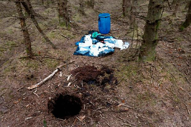 The hide discovered at Capanagh Forest near Larne