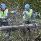 Workers in Kilcock, Ireland, clear fallen power lines