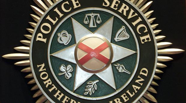Police are appealing for witnesses after a number of pallets were set alight outside a business in Strabane.