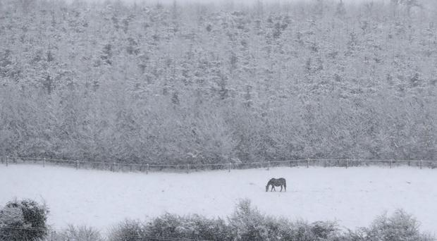 Snow in County Offaly earlier this month - it is expected to return to many parts of Ireland