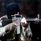 IRA members did not bear arms openly, according to the Geneva Convention
