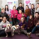 Henry and Harry are just two of the rescue dogs from the Causeway Coast Dog Rescue which appeared at the Students' Union in Coleraine for a 'Stress Free Puppy Petting Day'