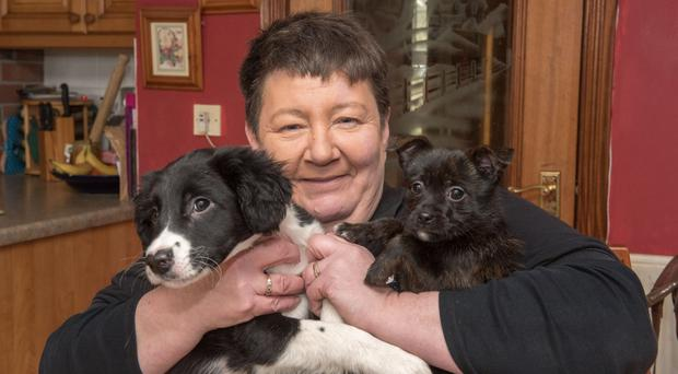 Violet Dennehy from Omagh who is caring for pups Oscar (left) and Flora