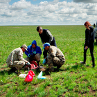 The team on the steppe