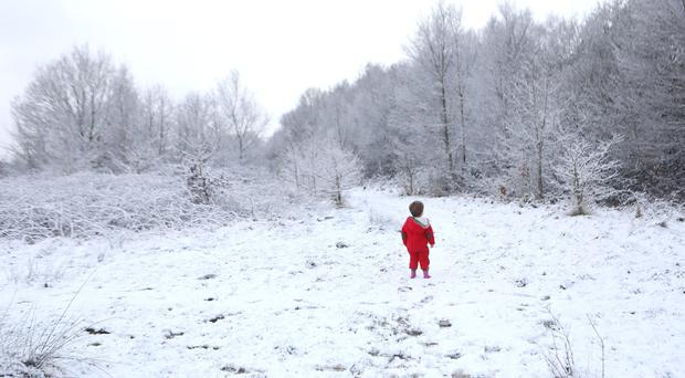 Two-year-old Felix Cox, looks at the snowy trees in Hargate Forest in Tunbridge Wells, Kent after snow fell overnight (Philip Toscano/PA)