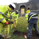 Workers from the Historic Environment Division of the Department for Communities start work at the entrance to Carrick castle