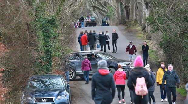Despite signs warning that traffic is banned from the Dark Hedges, some visitors continue to take cars