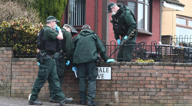 Police carry out searches in the Tyndale area off the Ballysillan Road after shots were fired