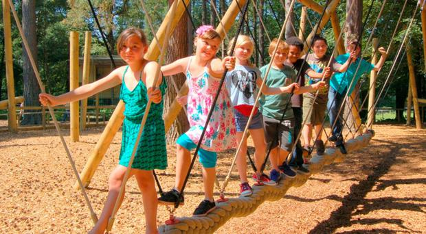 Children could enjoy an adventure trail like this at Gosford Forest Park
