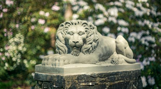 Rowallane Garden in Saintfield where the new stone lions have been installed
