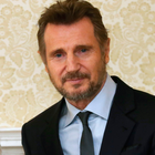 Pictured: Liam Neeson