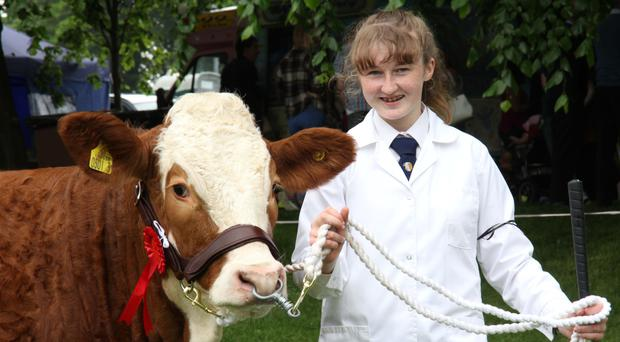 Simmental exhibitor Molly Bradley from Armagh at the Lurgan Show