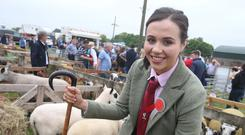 Sheep judge Kerry Angus