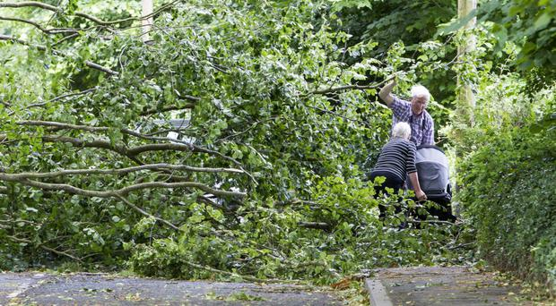 People struggle to remove a fallen tree on the Derrymore Road in Bessbrook,Co Armagh, after it was brought down during Storm Hector