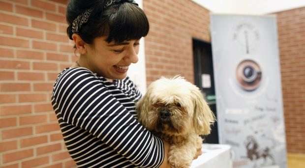 Victoria Armstrong with Haku, her Lhasa Apso, at Belfast's first Dog Expo