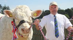 Alan Wilson with the Charolais and inter breed beef champion
