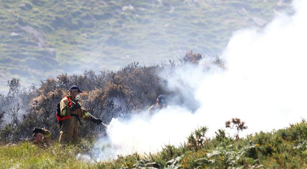 Emergency crews tackle the wildfire near Tollymore Forest Park in Co Down