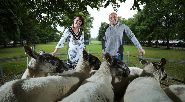 Rory Best, who is to receive the Freedom of Armagh City, Banbridge and Craigavon Borough, giving him the historic right to drive sheep on The Mall in Armagh, with Lord Mayor Julie Flaherty