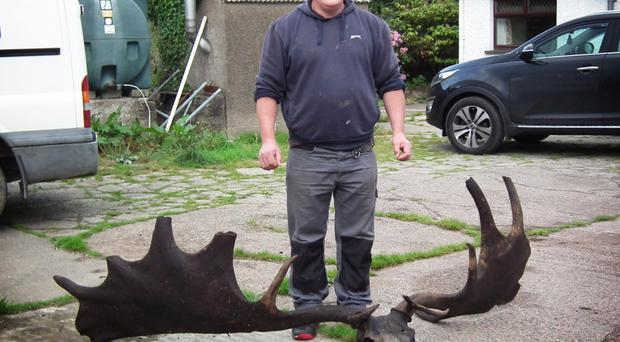 Raymond McElroy with the antlers and skull of a Great Irish Elk caught in a net in Lough Neagh