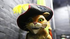 Puss in Boots, some of the wigs used during Shrek The Musical and company manager Davin Patrick with the dragon