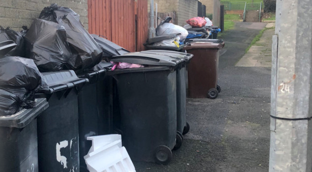 The residents of Dungloe Cresent and Mulroy Park in Belfast did not have their black bins collected