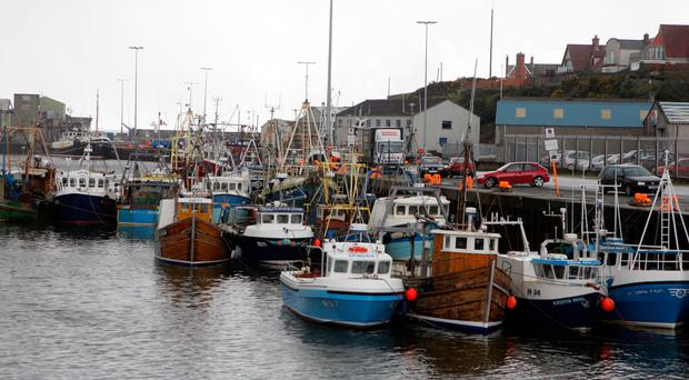 Kilkeel harbour is at capacity and needs to be expanded, says Alan McCulla of fisheries collective Sea Source