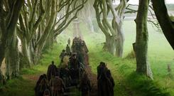 The Dark Hedges in Game Of Thrones