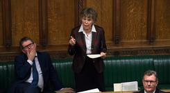 Labour's Kate Hoey addresses Parliament during yesterday's debate