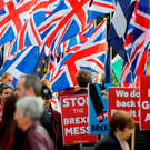 An anti-Brexit protest in Westminster