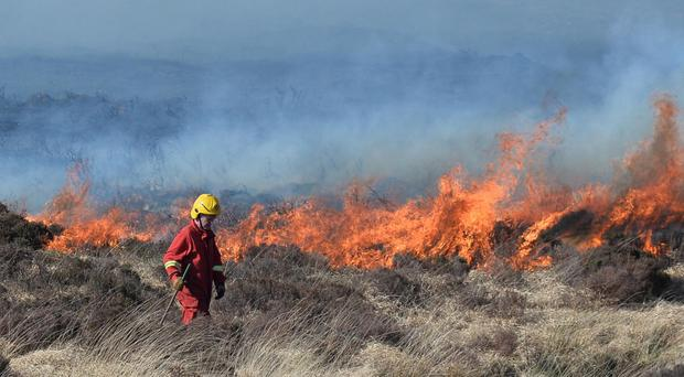 Gorse fires in Donegal