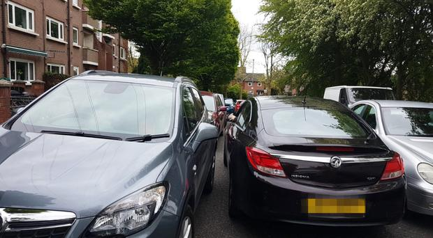 Cars parked at Annadale embankment during the marathon